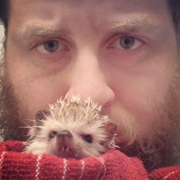 Funny animals of the week - 17 January 2014 (40 pics), hedgehog with vampire teeth