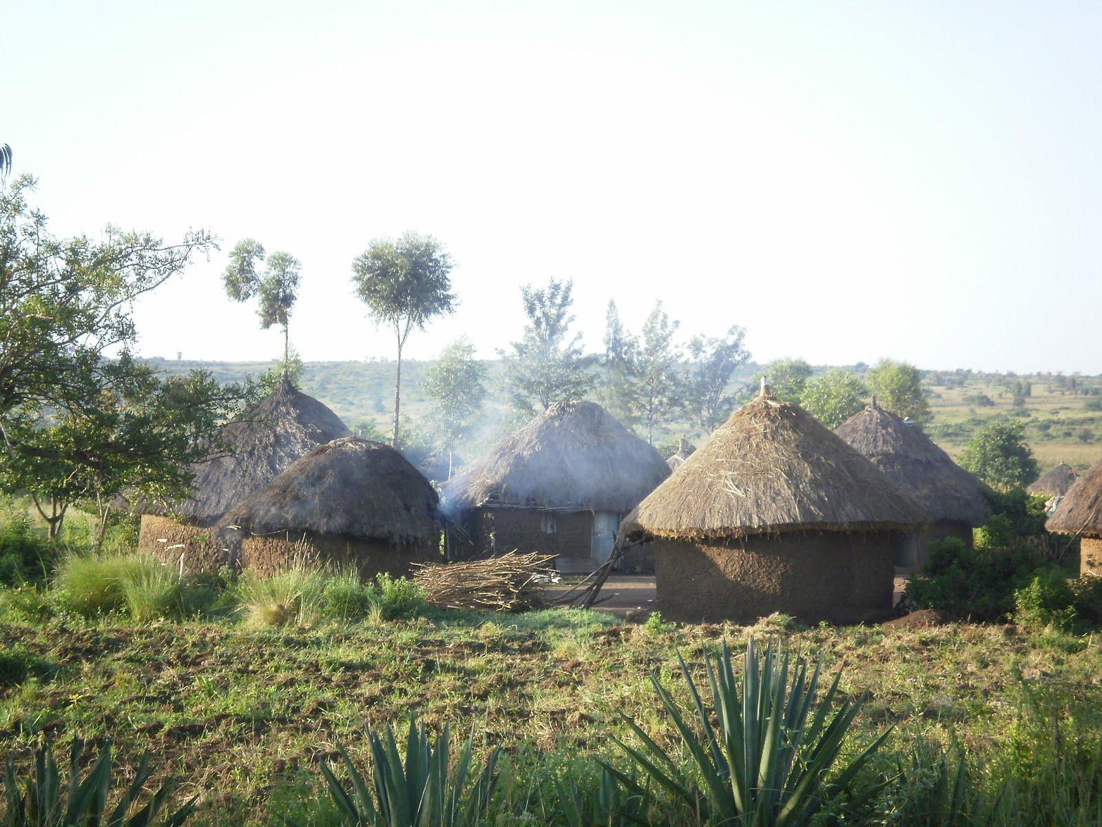 2010, Tanzania