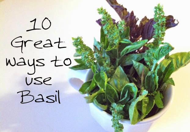Uses of Basil Leaves - Magrush.com