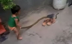 Baby with snake