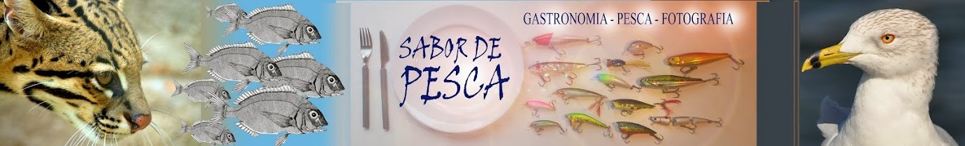 SABOR DE PESCA