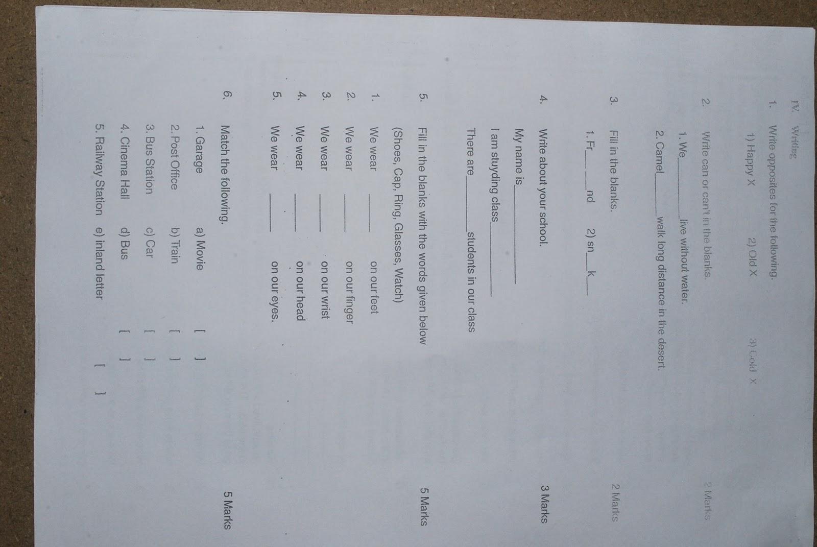 teach classification essays