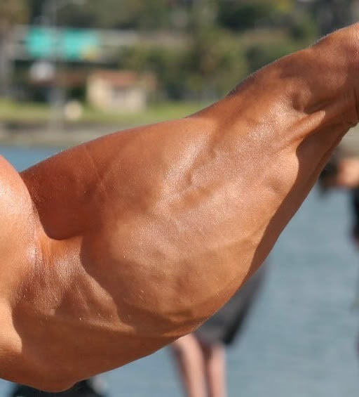Forearm exercises with dumbbells1