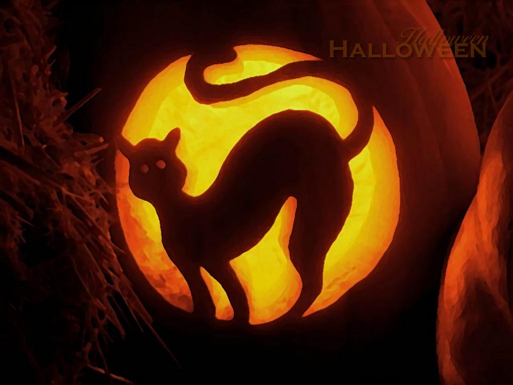 http://1.bp.blogspot.com/-K87wyO_71lo/UBgTUv1cOTI/AAAAAAAAAM8/Riq7kdgjibE/s1600/halloween-wallpaper-2011-1.jpg