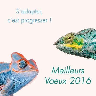 Le blog de graphic 39 arts carte de voeux entreprise 2016 for Carte de voeux humour