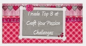 Top 3 -Craft your passion-20 mei