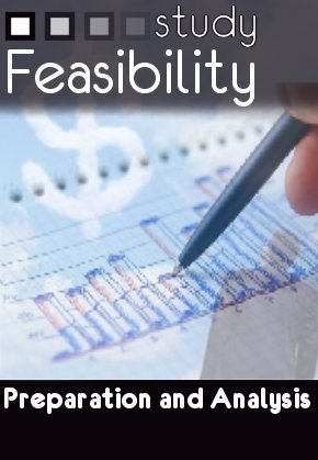 how to write a feasibility study
