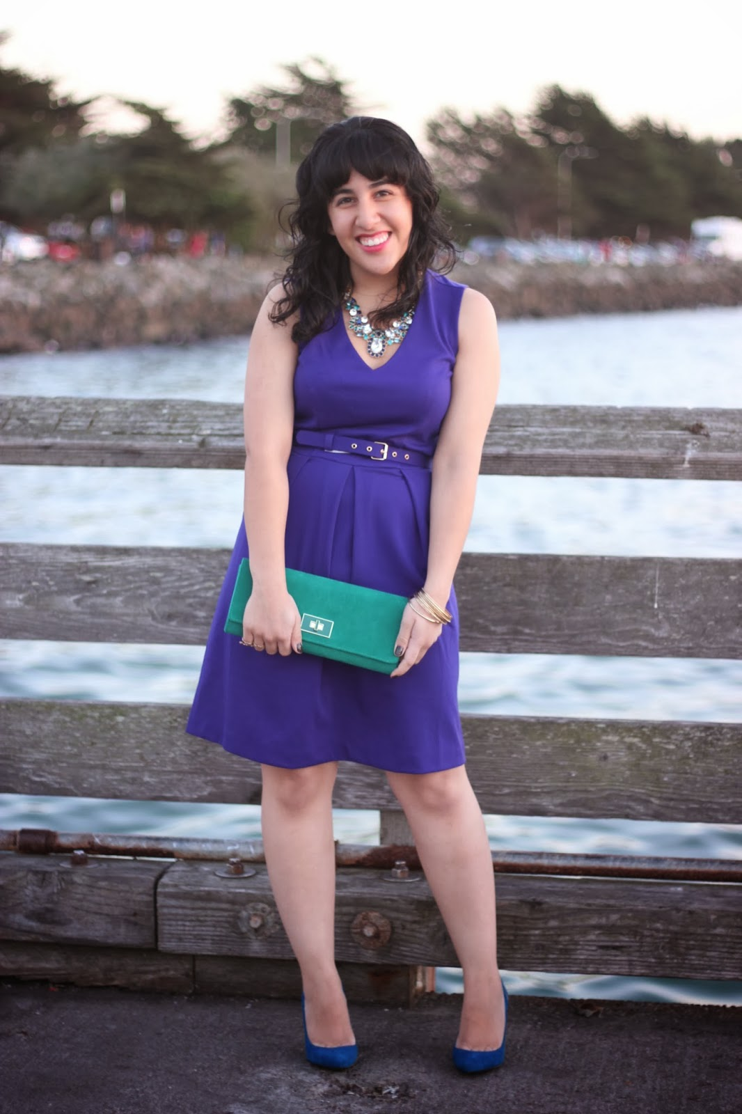 Banana Republic Purple Holiday Dress