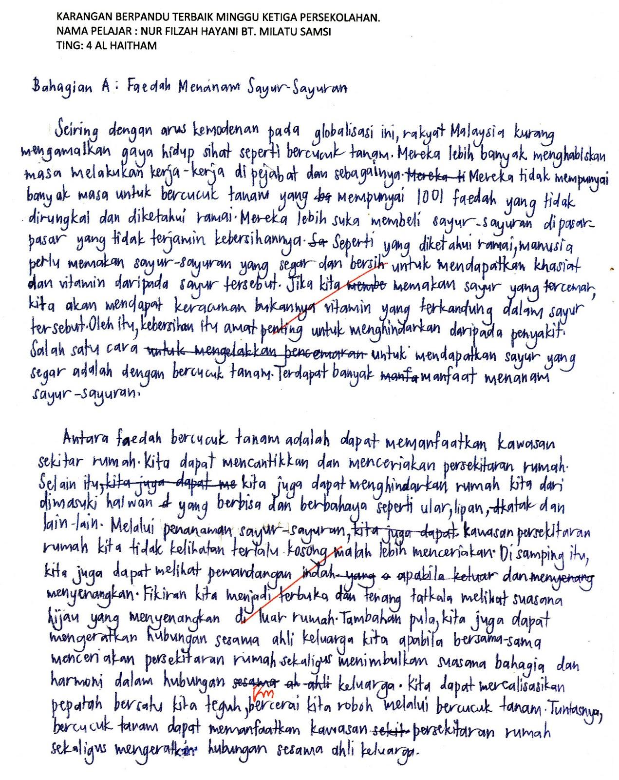 Plagiarism fre written essay