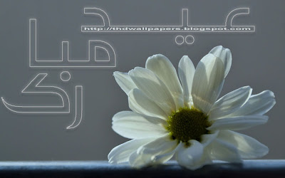 Eid Ul Adha Zuha Mubarak Flowers Wallpapers Greeting Cards 2012 in Urdu 020