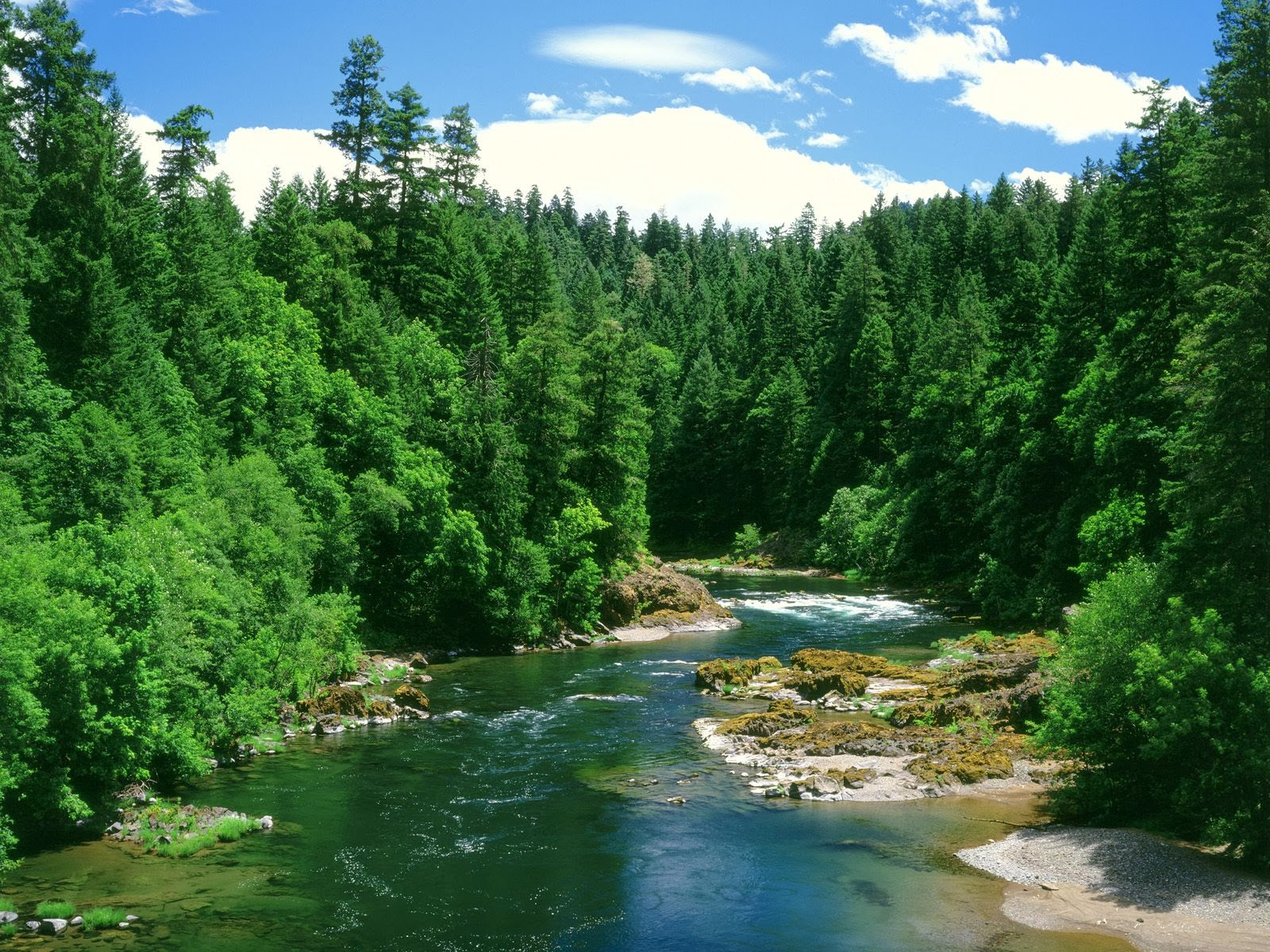Rivers Wallpapers Free Download