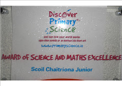 Log Book for our Award of Science and Maths Excellence