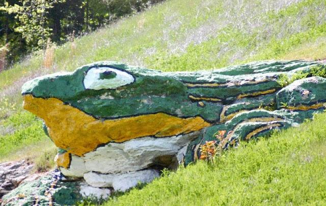 frog rock usa
