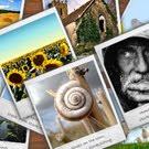 Galería de Imágenes del día ::: Septiembre de 2012