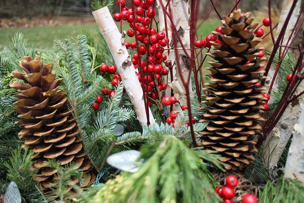pine cone, birch, berry, dogwood container detail -- The Impatient Gardener