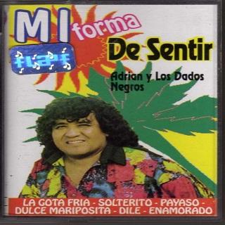 MI FORMA DE SENTIR 1996