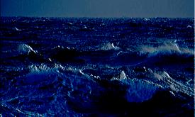 """""""Ocean's Ceiling"""""""