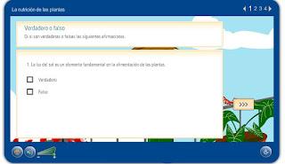 http://www.juntadeandalucia.es/averroes/carambolo/WEB%20JCLIC2/Agrega/Medio/Las%20plantas/contenido/cm07_oa02_es/index.html