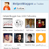 Updated Twitter Fanbox Widget For Blogger