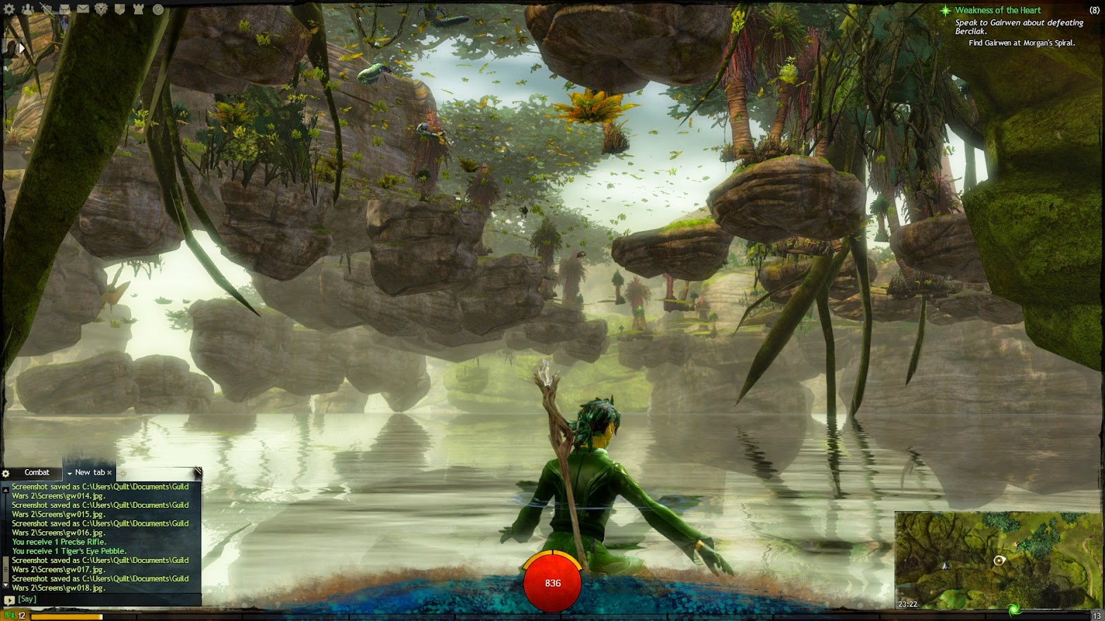 Caledon Forest, fell under the world. | Guild Wars 2