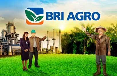 Lowongan Kerja Bank BRI Agroniaga