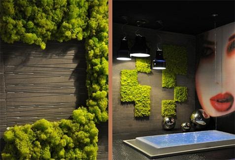 Decoraci n de interiores el muro verde es nuestra decoraci n for Decoracion de interiores verde