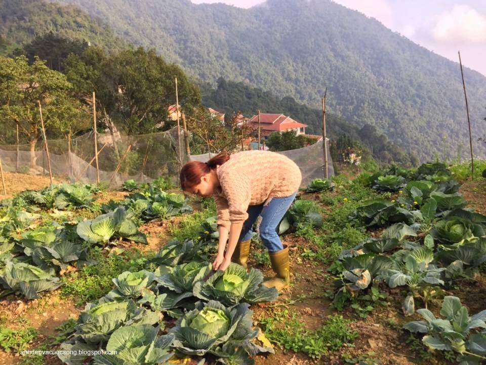 Ca sĩ Hoàng Thùy Linh nô đùa bên vườn rau 4