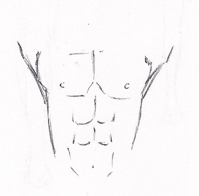 Dibujo manga: Musculatura