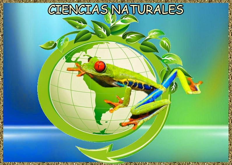 BLOG DE NATURALES 5º