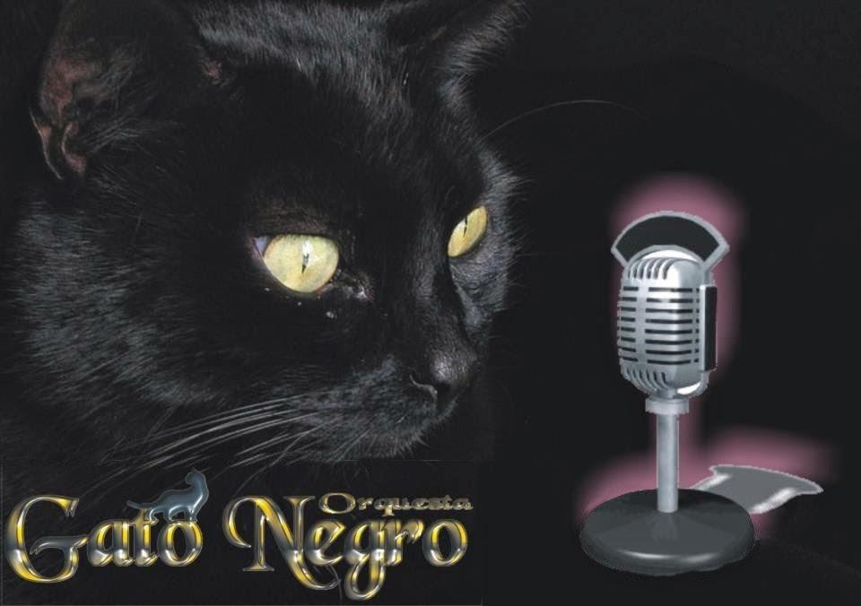 GATO NEGRO ORQUESTA