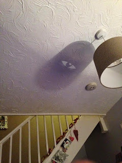 Different Weired Shadows