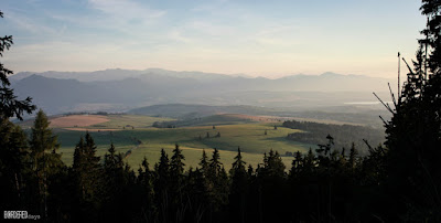 Field under the Western Tatras