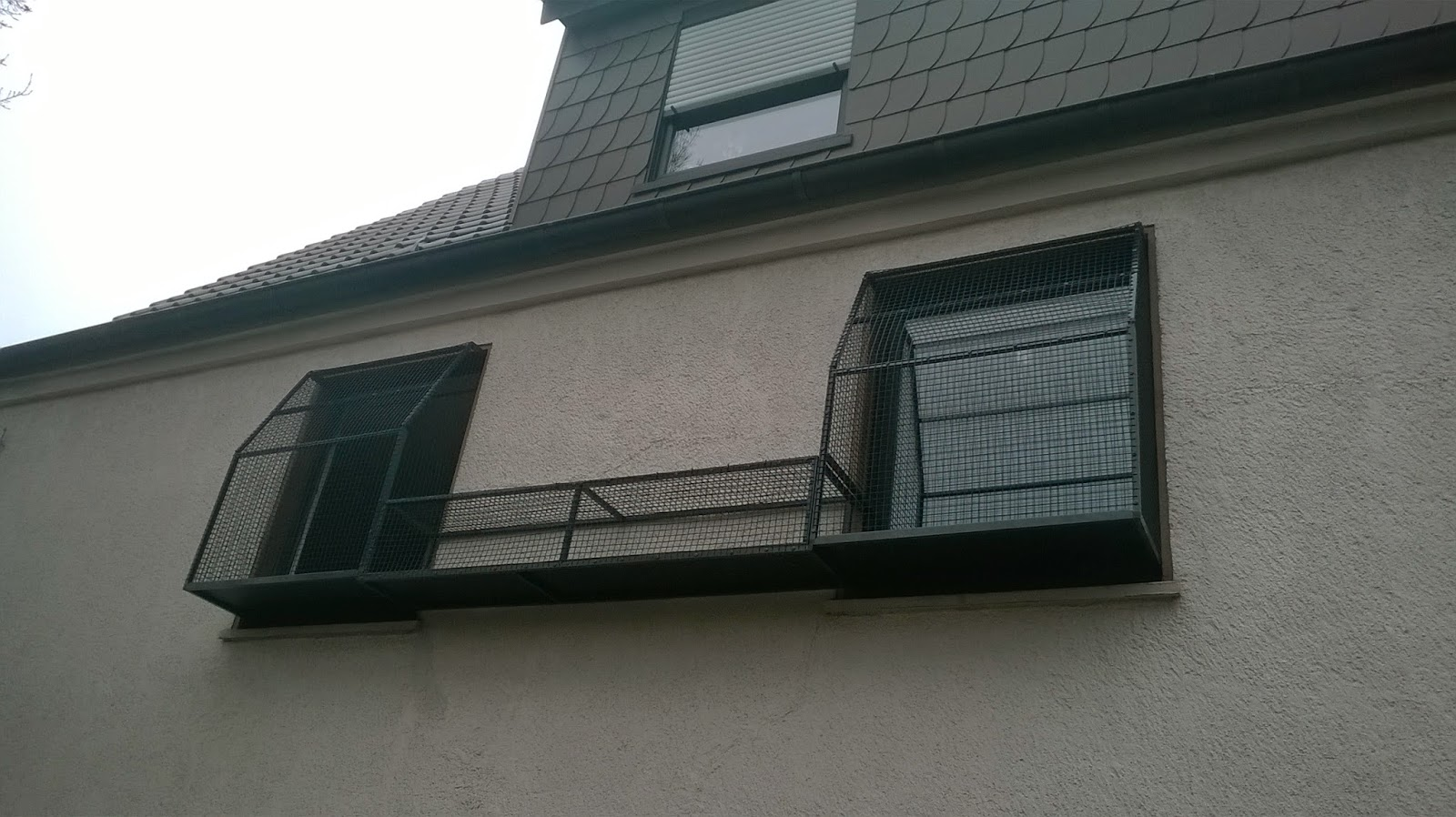 katzennetz nrw die adresse f r ein katzennetz. Black Bedroom Furniture Sets. Home Design Ideas