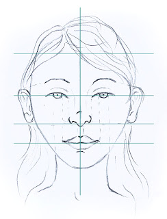 Drawing of face with proportion measures