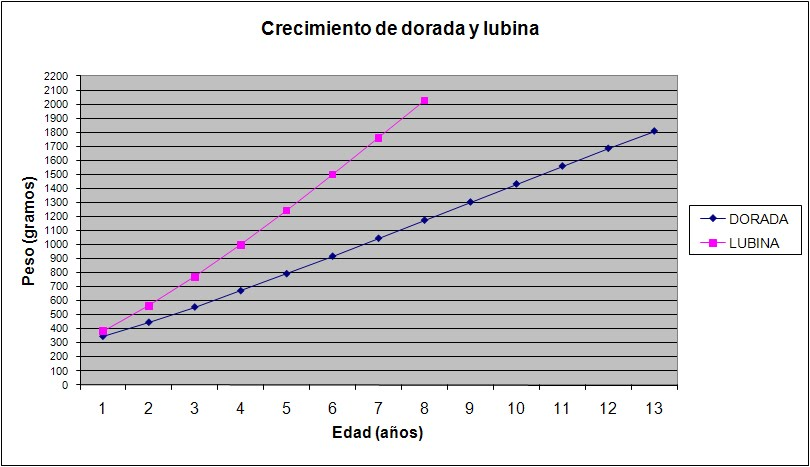 GRÁFICA DE CRECIMIENTO DORADA Y LUBINA