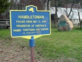 Hambletonian photo