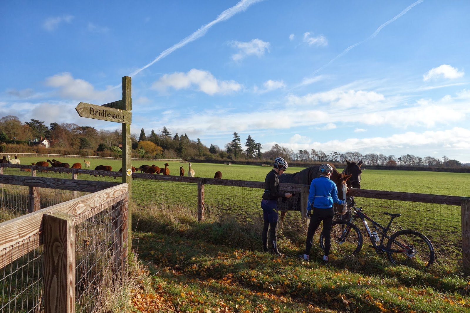 Riding on a bridleway