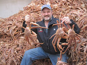 Bering Sea Crabs