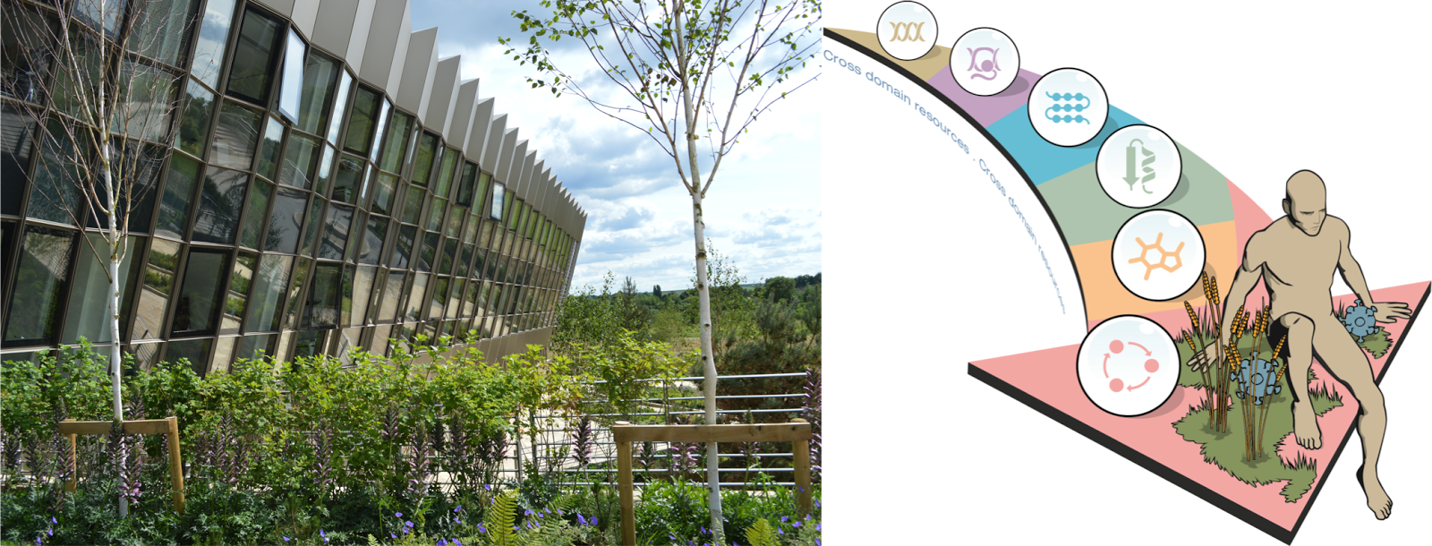 Away from the bench: Bioinformatics course at EMBL-EBI, Cambridge