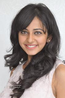 Actress-Rakul-Preet-Singh-at-Venakatadri-Express-Movie-Success-Meet