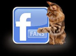 Clica aqui e siga-nos no Facebook!