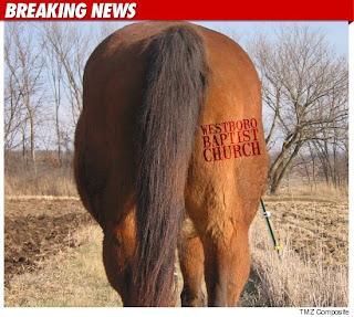 TMZ Horse Butt