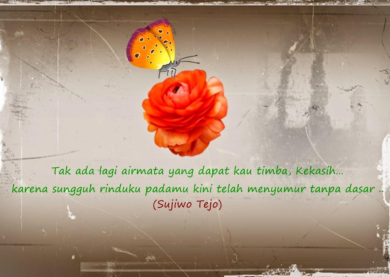 Kata-Kata Cinta Romantis/ Indah Penuh Makna Dari Sujiwo Tejo