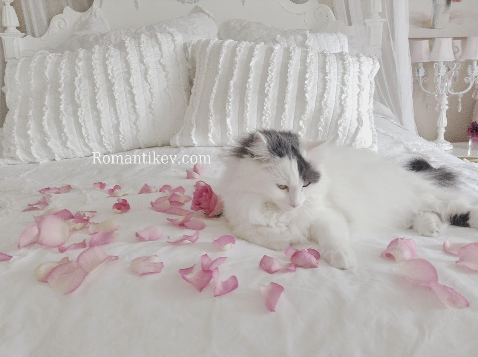 Romantic shabby chic home romantic shabby chic blog - Romantic Shabby Chic White Whisper