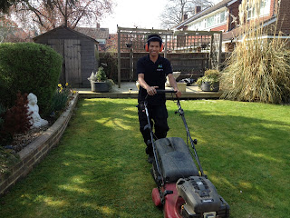 grass cutting, crawley, mowing, gardener, garden maintenance