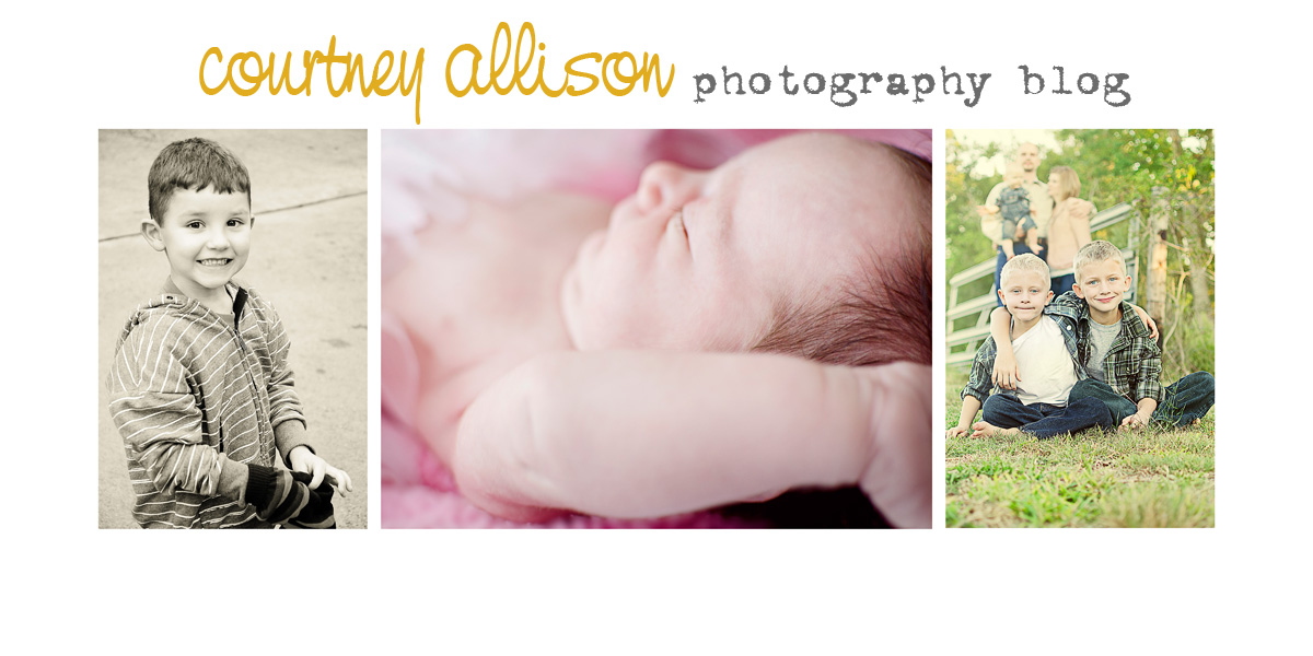 Courtney Allison Photography