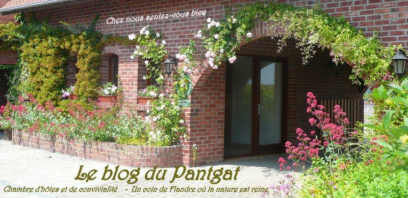 Un  Coeur en Flandre