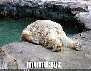 Bonjour tout le monde - Page 32 Funny+Bear+pictures++3