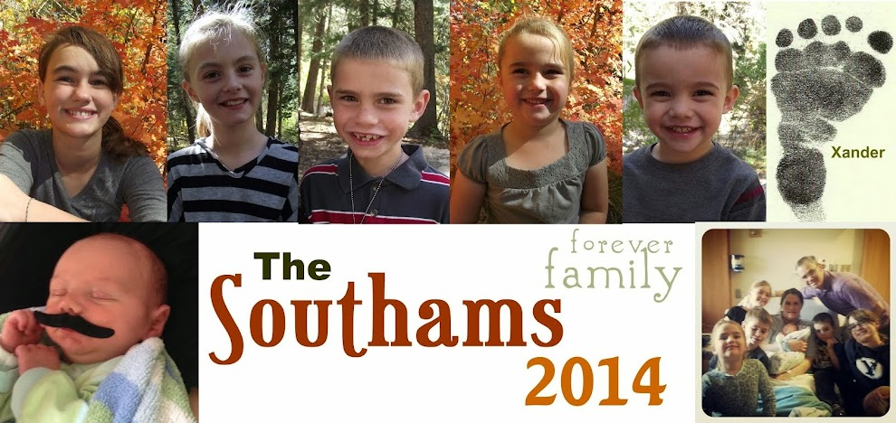 The Southams