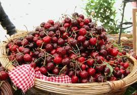 frutti di stagione: le ciliegie